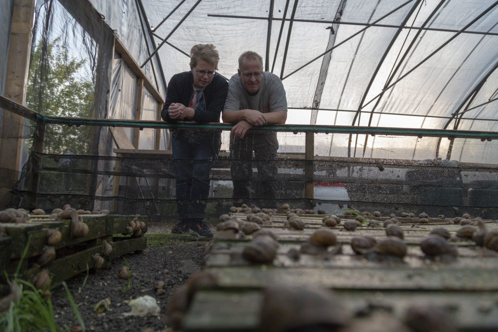 Farmers and Growers - Loes Heerink - Snail farm